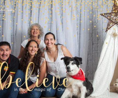 Christmas card with dog
